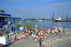 Galata-Varna marathon swimmers at the Port Varna Stock Photos