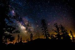 Galaxia de la vía láctea con los árboles Foto de archivo libre de regalías