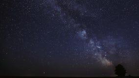 Galaxia de la vía láctea en cielo estrellado de la noche sobre árbol solo en prado del verano Estrellas y rastros del meteorito q almacen de video