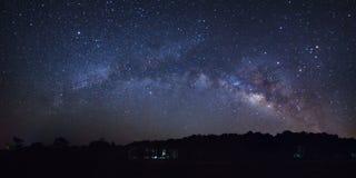 Galaxia de la vía láctea y silueta hermosas del árbol de pino en a cerca imagenes de archivo