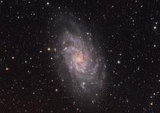 Galaxia del molinillo de viento - Triagulum Imagen de archivo