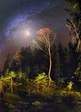 Galaxia y caída Fotografía de archivo libre de regalías