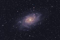 Galaxie de M33 Triangulum photographie stock libre de droits