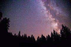 Galaxie de manière clairement laiteuse la nuit foncé, silhouette des arbres images libres de droits