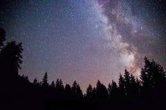Galaxie de manière clairement laiteuse la nuit foncé, silhouette des arbres images stock