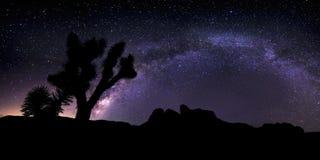 Galaxie de manière laiteuse au-dessus du désert photo libre de droits