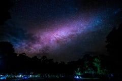 Galaxie de manière laiteuse se levant au-dessus des arbres image stock
