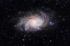 Galaxie de Triangulum image stock