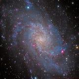 Galaxie des Feuerrad-M33 lizenzfreie stockfotos