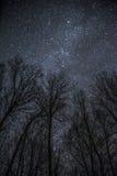 Galaxie-Nacht Lizenzfreie Stockbilder