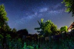 Galaxskott för mjölkaktig väg i trädgården arkivfoto
