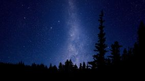 Galaxy stars. Timelapse of stars moving in night sky over pine trees