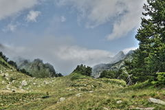 Galbe valley in  Pyrenees orientales,  France Stock Images