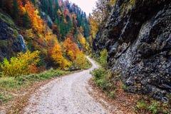 Galbena canyon in Apuseni mountains Stock Photography