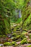 Galbena river in Apuseni mountains Royalty Free Stock Image