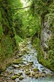 Galbena river Royalty Free Stock Images