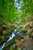 Galbena river and gorge Royalty Free Stock Images