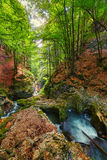 Galbena river and gorge Royalty Free Stock Photography