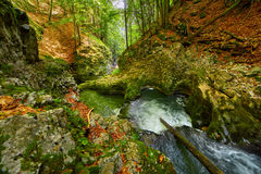 Galbena river and gorge Stock Images