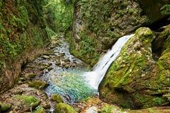 Galbenei gorge waterfall Royalty Free Stock Photos