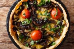 Galdéria deliciosa do cogumelo com queijo, verdes e fim-u dos tomates Fotografia de Stock Royalty Free