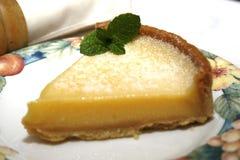 Galdéria do limão Foto de Stock Royalty Free