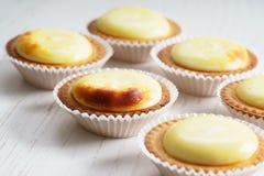 Galdérias do queijo Imagens de Stock Royalty Free