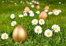 Gald easter egg Royalty Free Stock Photo
