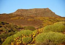 Galdar, Gran Canaria royalty-vrije stock foto