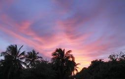 galen solnedgång Arkivfoton