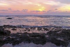 galen solnedgång Royaltyfri Fotografi