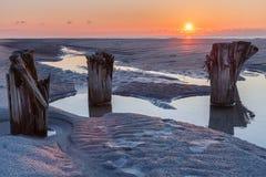 Galenskapstrand södra Carolina Sunrise Royaltyfria Foton