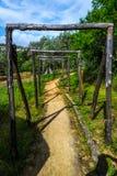 Galeria natural Fotografia de Stock