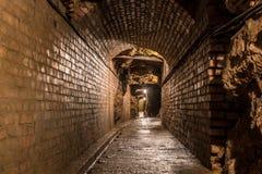 Galerij in een Zilveren Mijn in Bloederige Tarnowskie, Unesco-erfenisplaats Royalty-vrije Stock Fotografie