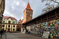 Galerij van beelden van straatkunstenaars rond Florian Gate Stock Fotografie