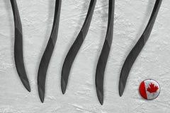 Galet canadien et cinq bâtons de hockey Image stock