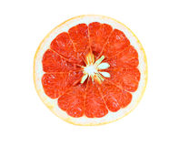 Galf of Grapefruit Royalty Free Stock Photo