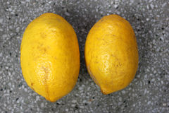 Galgal, Hill lemon. Citrus pseudolimon, Rutaceae, fruit grown in NW India with oblong fruits finally turning yellow with with white pulp, highly acidic, used royalty free stock photo