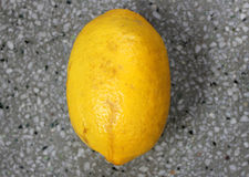 Galgal, Hill lemon Royalty Free Stock Photo