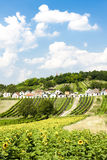 Galgenberg, Lower Austria, Austria Stock Photos