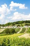 Galgenberg, Niederösterreich, Austria Fotografie Stock