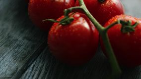 Galho com os tomates vermelhos maduros filme