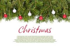 Galho do Natal com bolas Imagens de Stock