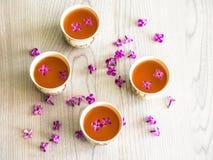 Galho lilás do lilás do bule do chá verde do chá Imagem de Stock Royalty Free