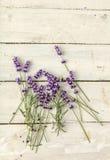 Galhos da alfazema na madeira Imagem de Stock Royalty Free