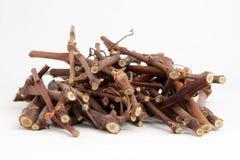 Galhos da madeira Fotografia de Stock