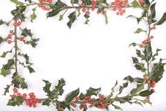 Galhos do azevinho isolados no branco Imagem de Stock Royalty Free