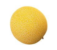 Galia melon obraz royalty free