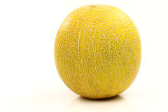 Galia melon Royalty Free Stock Photos