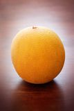 Galia melon Royalty Free Stock Image